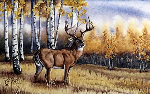 notecards  north american big game  elk  deer  pronghorn
